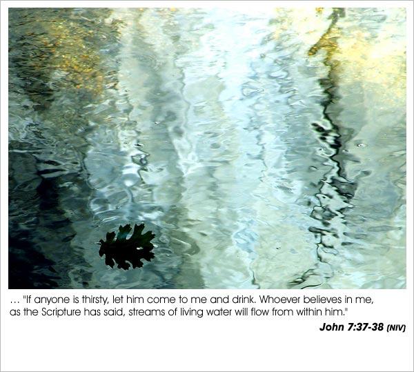 john73738-1.jpg