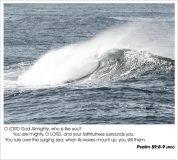 psalm8989
