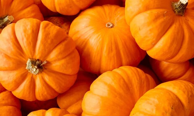 Should Christians Celebrate Halloween? – Christianity and All Hallows Eve